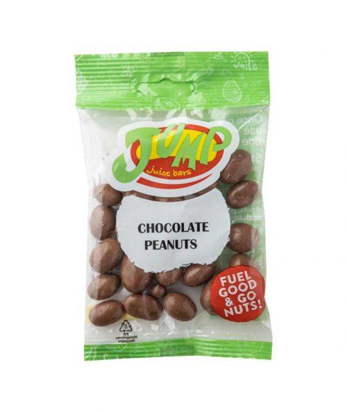 choc-peanut-1-500x594 Bites
